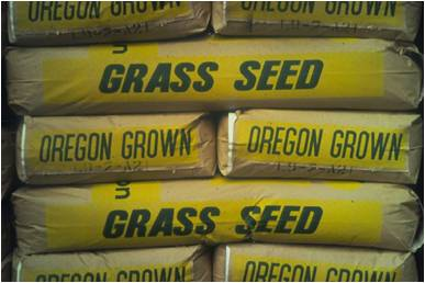 grass seed bags